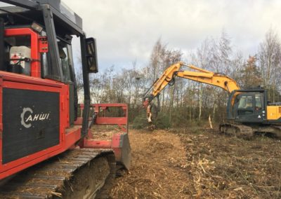 tree site clearance